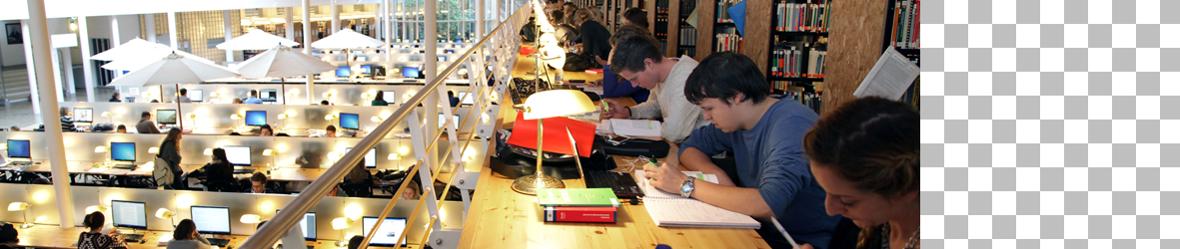 bibliotheek rechten - universiteit leiden